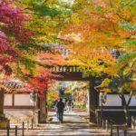 松戸小金東漸寺の紅葉撮影に行ってみた