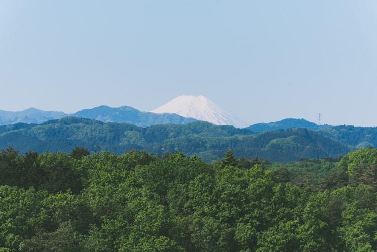 東京青梅 塩船観音寺 富士山