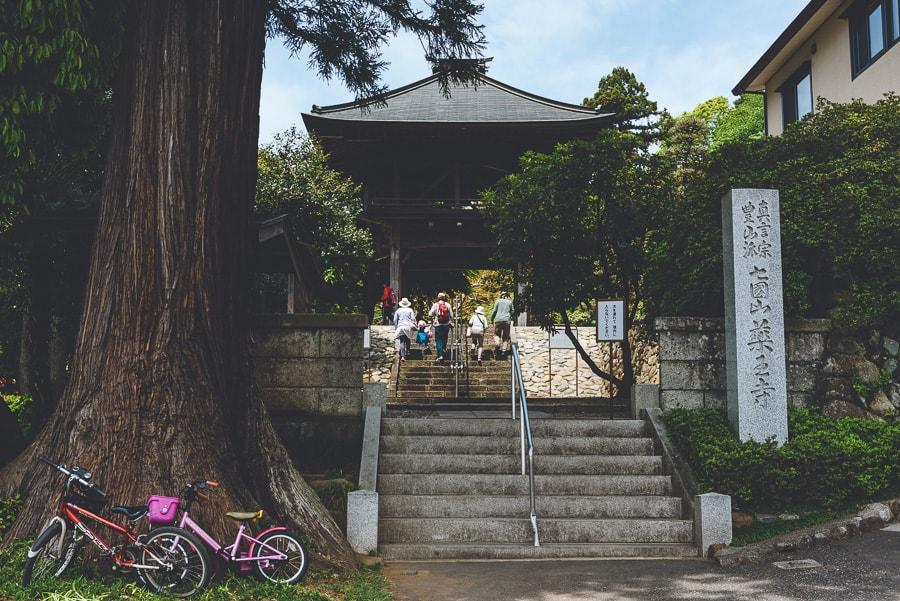 薬王寺 つつじ 山門