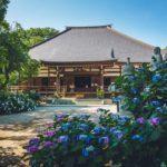 埼玉熊谷のあじさい寺能護寺へ撮影に行ってみた