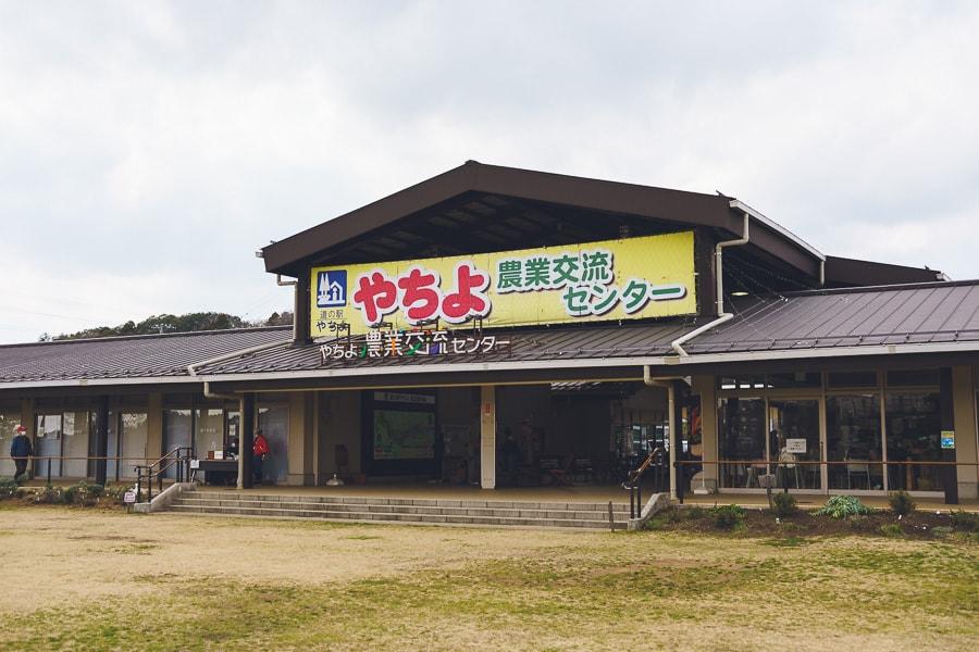 八千代新川千本桜 農業交流センター