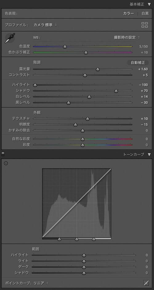 Lightroom Classic RAW現像 ハイライト-100 シャドウ+100